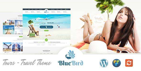 blue bird - travel themes